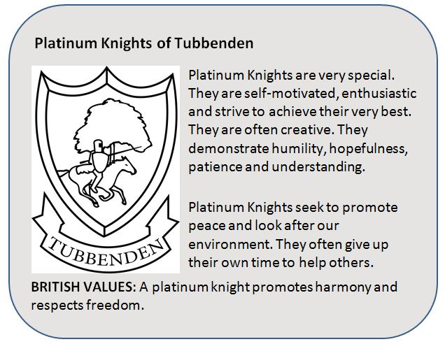 Platinum Knight
